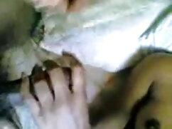 সুন্দরী বাংলা সেক্সি চুদাচুদি বালিকা হালকা করে তারকা